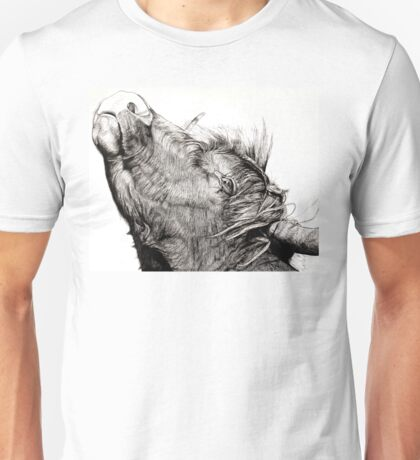 Highland Bull Unisex T-Shirt