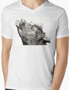 Highland Bull Mens V-Neck T-Shirt