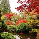 Butchart Japanese Garden in the Fall by AnnDixon