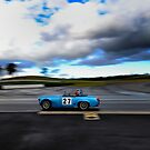 Muscle Car Masters | Sydney Motorsport Park | 2014 by Bill Fonseca