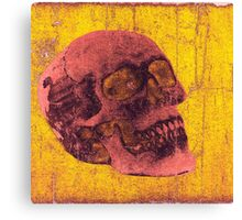 Grunge Skull Canvas Print