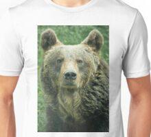 Eurasian Brown Bear T-Shirt