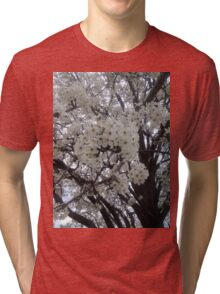 Blossoms Before A Storm Tri-blend T-Shirt