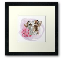 Pit Bulls Are Lovers Watercolor Painting Framed Print