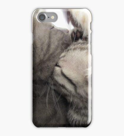 Cute cat kittens iPhone Case/Skin