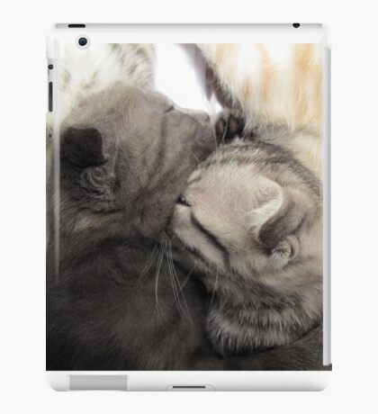 Cute cat kittens iPad Case/Skin