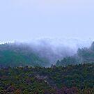 Kyoto: Evening cloud by Sue Ballyn