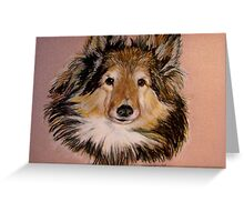 """Jammers"" Portrait Of A Sheltie Greeting Card"