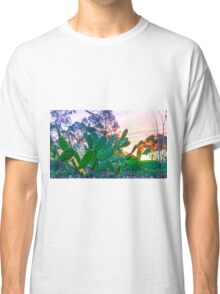 The Prickly Sunset Classic T-Shirt