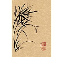 """Serene""  Sumi-e ladybug & bamboo ink brush painting Photographic Print"