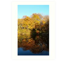 Reflect the Season Art Print