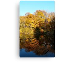 Reflect the Season Canvas Print