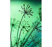 firing neurons Photographic Print