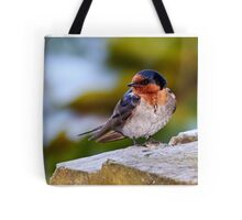 Welcome Swallow Tote Bag