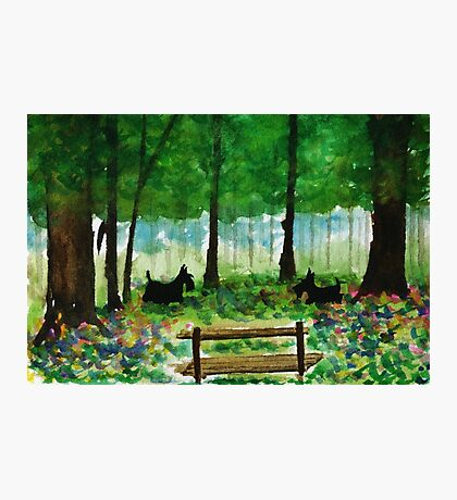 Scottie Dogs The Four Seasons 'Spring' Photographic Print