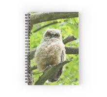 Downy Spiral Notebook