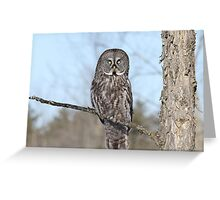 Perching perfect Greeting Card