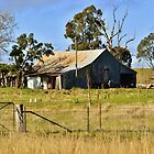 Shearing Shed #2 by Terry Everson