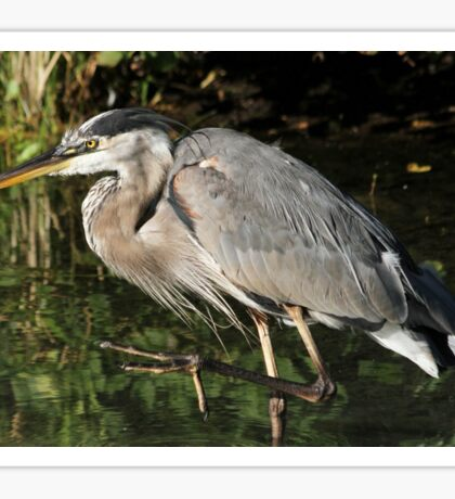March of the heron Sticker