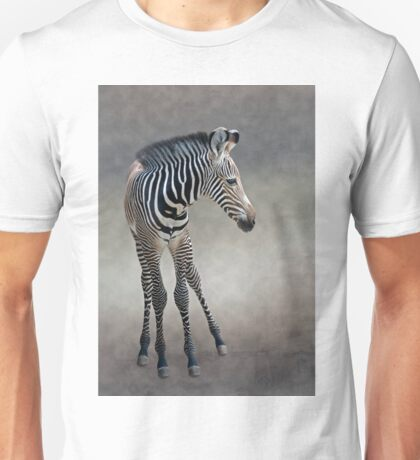 Dreams in Black and White (Grevy's Zebra) Unisex T-Shirt