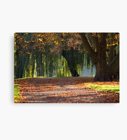 colourful autumn Canvas Print