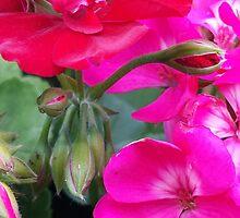 flowers vegetable spring garden by Krzyzanowski Art