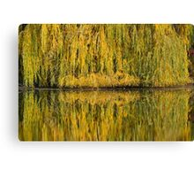 mirroring Canvas Print
