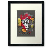 Play Cat Framed Print