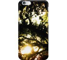 Where the Fairies Dwell iPhone Case/Skin