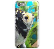 fish spring garden iPhone Case/Skin