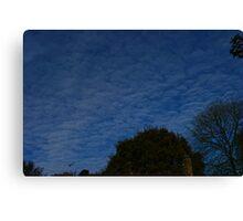 sky is blue Canvas Print