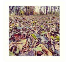 LG G5 Autumn Favorite Art Print