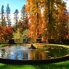 A Fountain in Fall by Barbara  Brown