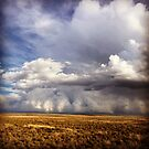 Autumn Storm by Gregory Collins