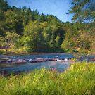 Flat Rock Rapids by Jessica Dzupina