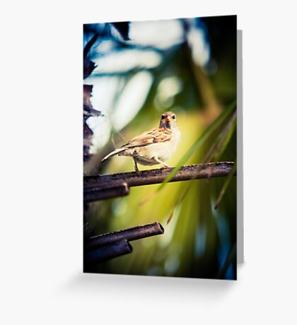 The bird is the word I Greeting Card