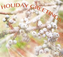 Holiday Greetings by Susan Werby