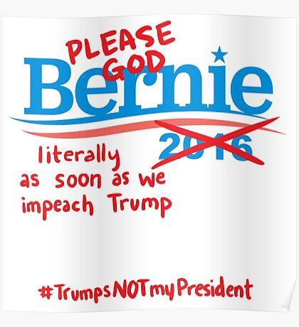 Bitter About Bernie  Poster