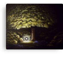 Still Some Mystery Befalls Canvas Print