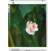 Pale Peach Rose iPad Case/Skin