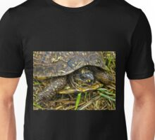 Box turtle in the fall- thinking about hibernating Unisex T-Shirt