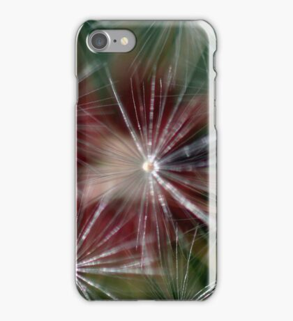 Dandelion Seed Head iPhone Case/Skin