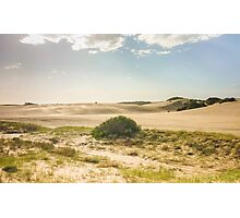 Dunes of Cariló Beach in Argentina Photographic Print