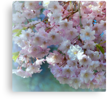 Blossoming Tree - Early Spring  Canvas Print