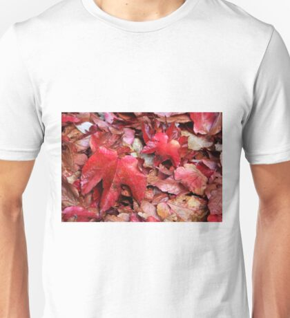 Red Carpet of Leaves Unisex T-Shirt