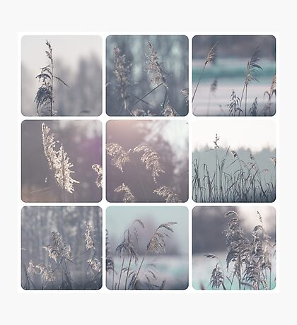 Collage of winter images  Photographic Print