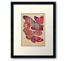 Butterflies in Strips Framed Print
