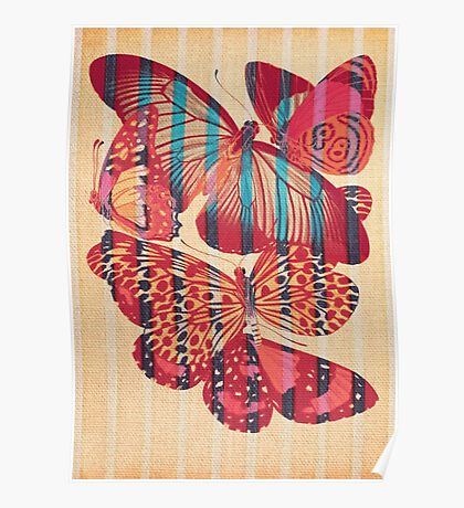 Butterflies in Strips Poster