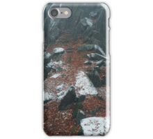 Rocky Path.  In Mysterious Woods iPhone Case/Skin