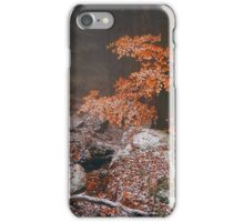 The Last. In Mysterious Woods iPhone Case/Skin